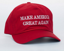 (Image via Trump's online store)