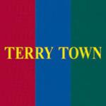terryTown_cat