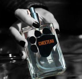(Image via cheetosstore.com)