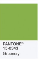 Pantone announced Greenery as the 2017 Color of the Year.